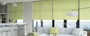ETM Window Roller Blinds